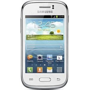 Samsung Galaxy Young NFC S6310